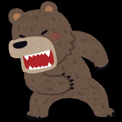 animal_bear_kowai (1)