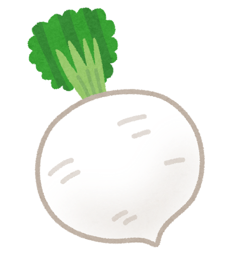 vegetable_kyouyasai_syougoin_daikon