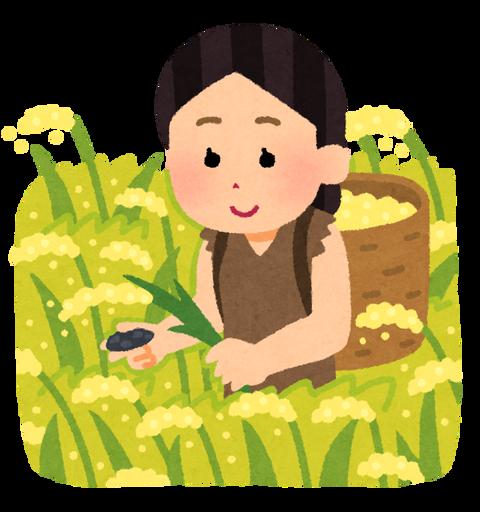 【朗報】観光業界の人を農業現場で受け入れへ 『JA全農』と『JTB』が提携
