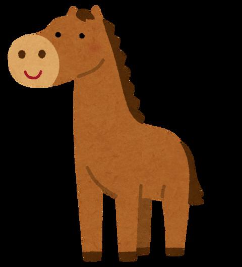 animal_uma_horse_stand