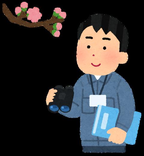 job_sakura_mori_man