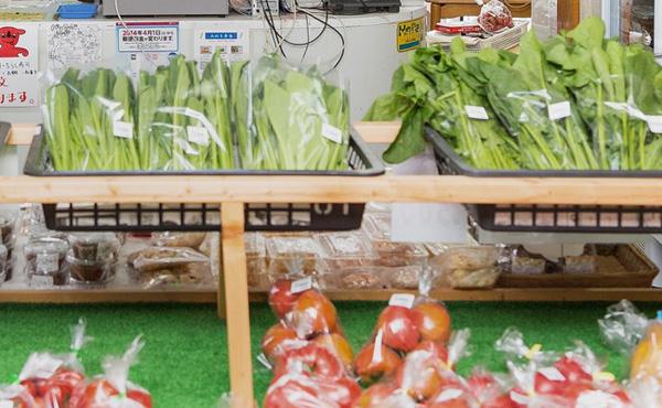 野菜の高騰いつまで続くの?ほとんどの野菜が通常よりも高いけど…