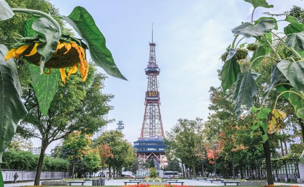 東京オリンピック、札幌でやるかもしれん