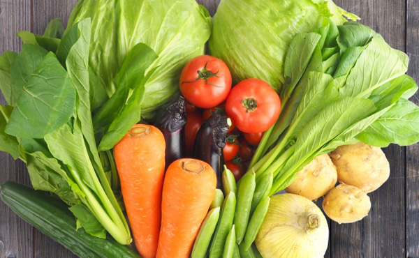 【野菜】8月盆まで高値を維持か