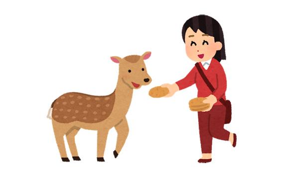 【悲報】奈良公園の鹿せんべい50円値上げ。10枚150円から200円に。消費増税で28年ぶり