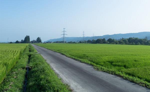 田舎は物価安いとか暮らしやすいとかよく聞くけど・・・