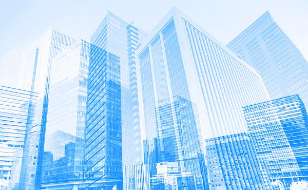 株主優待の導入企業が過去最高を更新
