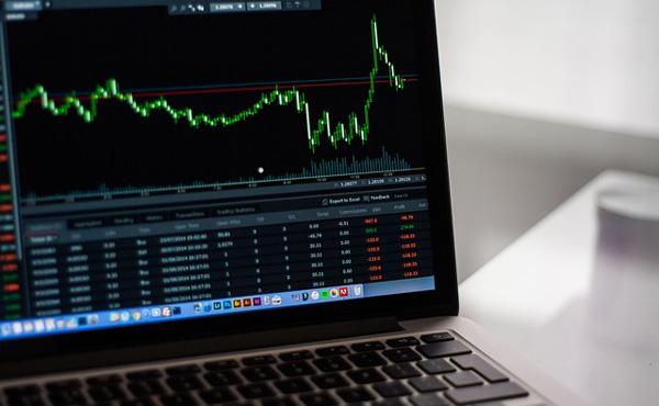 株今年から始めたんだけどお前らの今年の株での収支ちょっと書いてみて