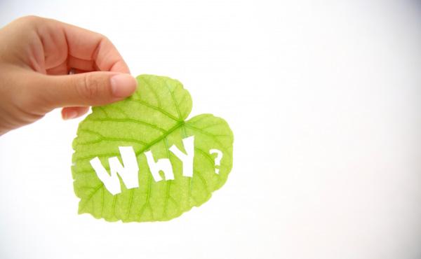 なぜ法人税ではなく消費税を上げるのか?