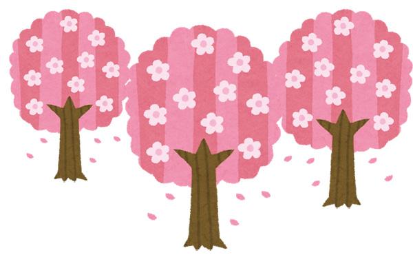 「桜を見る会」 来年度の実施は中止に 再来年度以降は実施する方向