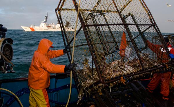 カニ漁師、3ヶ月働くだけで年収1500万円。場所によっては年収1億円
