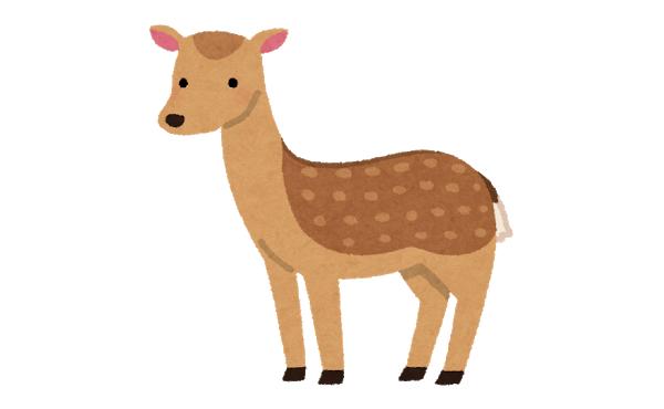 奈良の鹿さん、観光客が激減した結果…