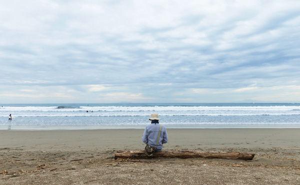海辺に行って流木拾ってオークション出すだけで20000円の利益wwwww