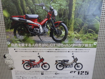 RIMG2534