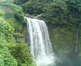 白糸の滝�