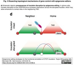 Epigenome editors 3