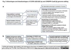 CCR5-Δ32:Δ32