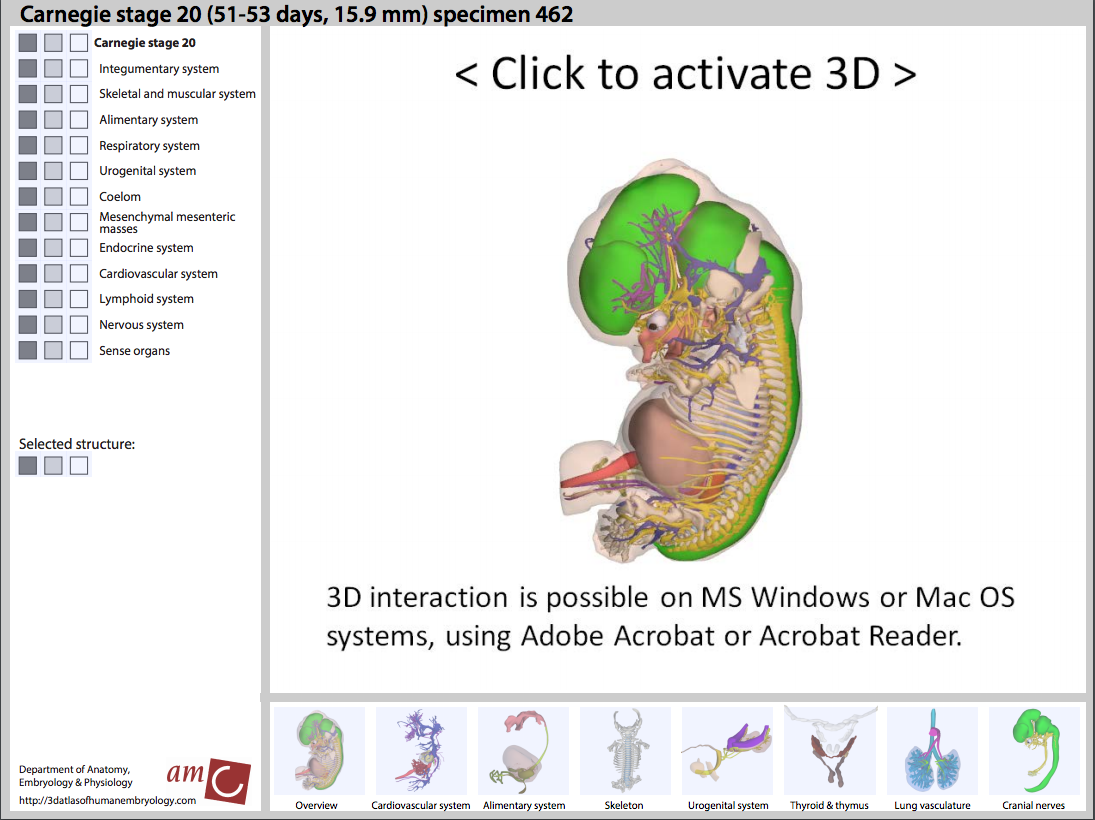ヒト胚発生の対話型3次元デジタル・アトラスの開発 : crisp_bio