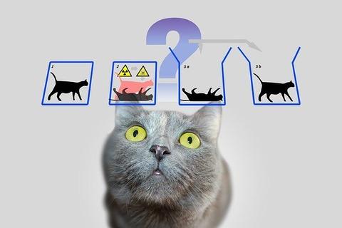 三大誤用されがちな理系中二ワード「シュレディンガーの猫」「ゲーデルの不完全性定理」