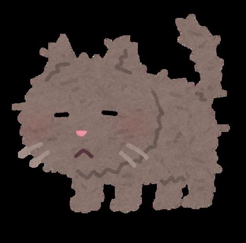 pet_cat_boroboro