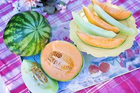 melons-848086_640