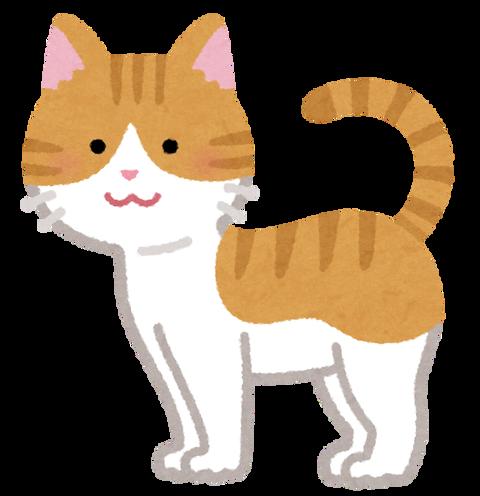 cat09_moyou_chatora_moyou_white