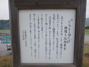 0205d85f.jpg