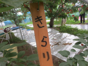 b5a1879a.jpg