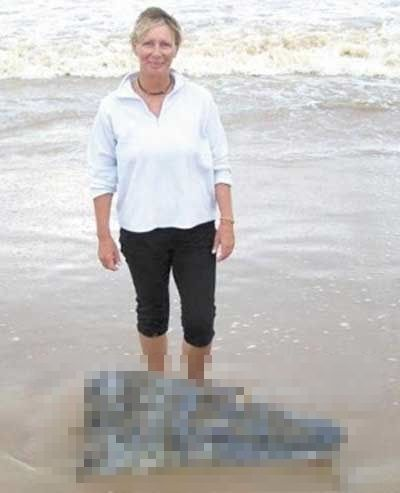 Beach crocodile head