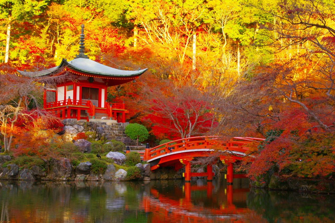今すぐ京都が恋しくなる!絶対に行きたい京都の「紅葉スポット」10選 | RETRIP