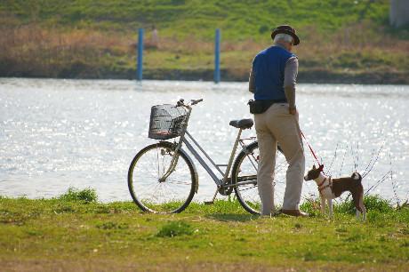 川辺の自転車