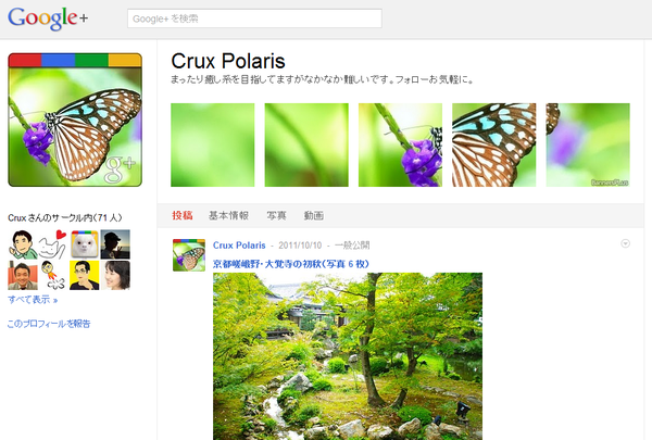 Crux Polaris   Google
