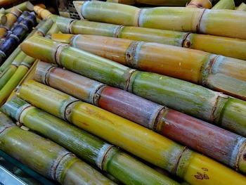 sugar-cane-276242_640