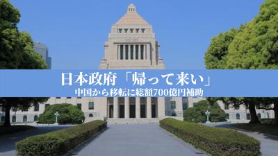 日本政府「帰って来い」