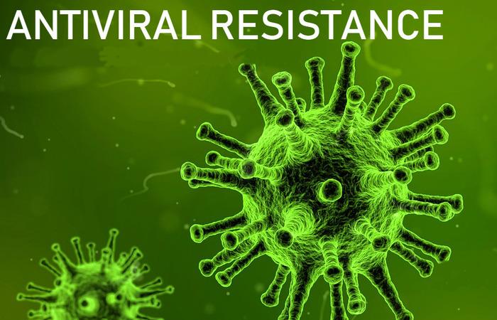 Coronavirus(6)