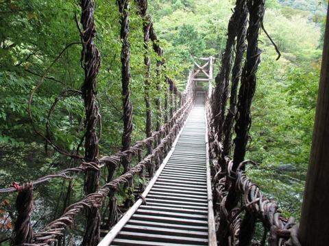 08_二重かずら橋