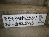 階段の応援