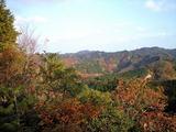 清和県民の森