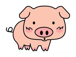 animal_pig_9533-300x225