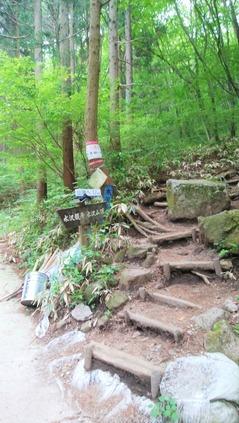 水沢山登山道2