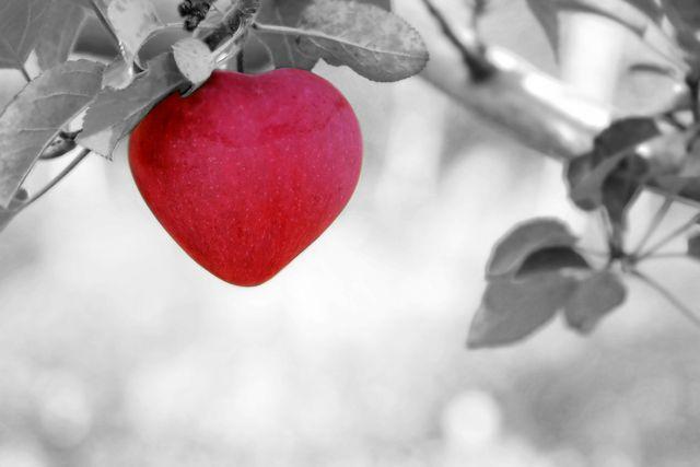 apple-570965_1280