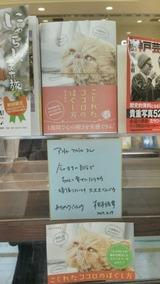 6新神戸駅アントレマルシェ.JPG