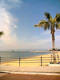 百道の浜辺2