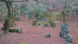 光明禅寺の紅葉