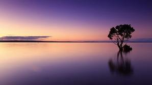 sunset-1373171__340
