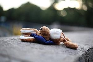 soft-toy-1767438__340