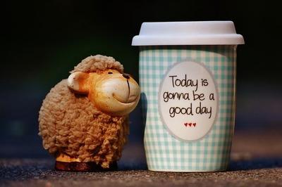 sheep-1644146_640