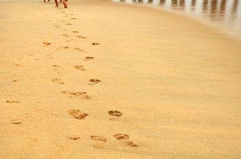 footprints_free_photo1-690x457