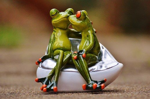 frogs-1234585__340[1]