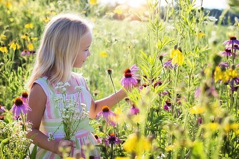 少女と花畑